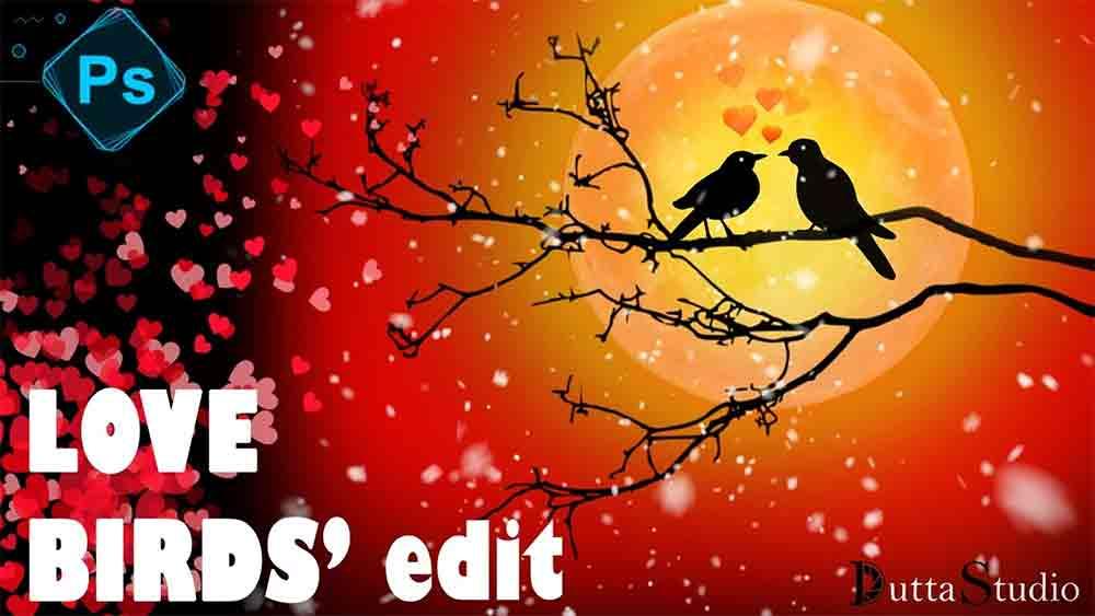 Love Birds in Photoshop